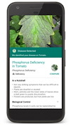 The Plantix app