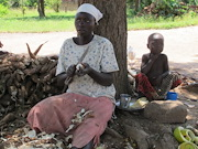 Female cassava farmer selling crop on the roadside in Uganda (© CABI)